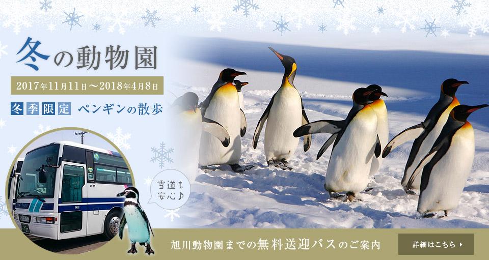 冬の動物園