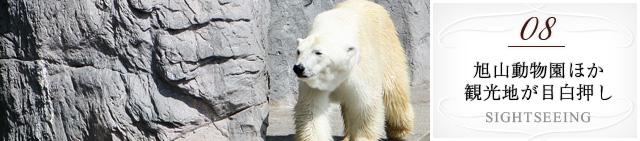 08 旭山動物園ほか観光地が目白押し